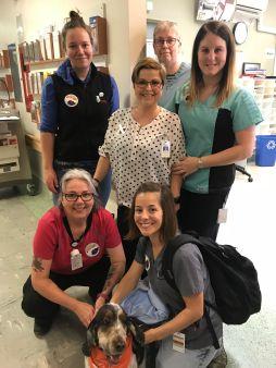 2018-11-01-ZOO-un an vet et infirmières