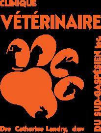 Logo CVSG orange