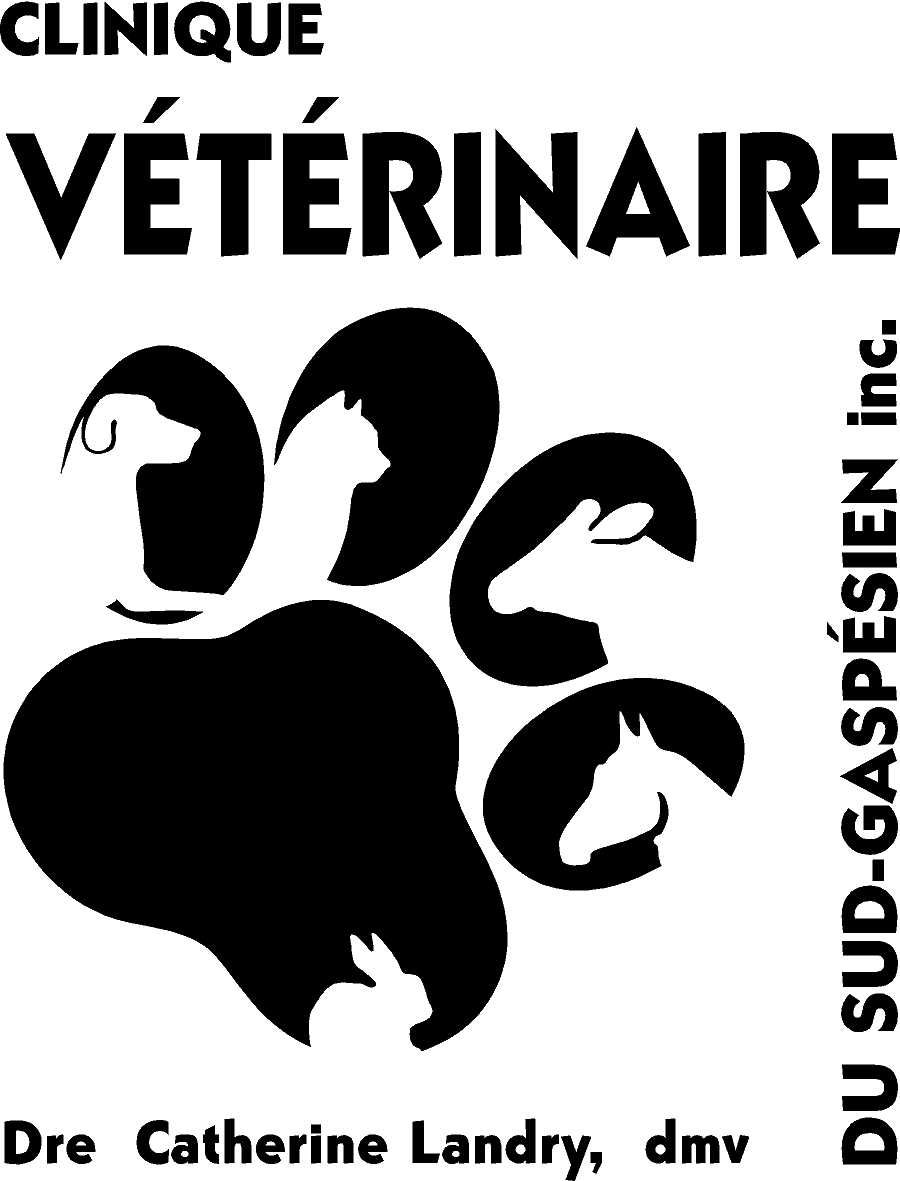 Logo CVSG noir